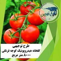 طرح توجیهی گلخانه گوجه فرنگی 8000 مترمربع