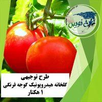 طرح توجیهی گلخانه گوجه فرنگی 1 هکتار