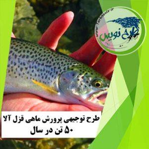 طرح توجیهی پرورش ماهی قزل آلا 50 تن